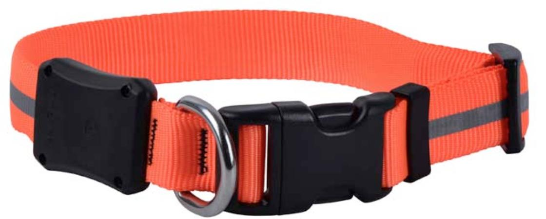Nite Ize Night Dawg Collar