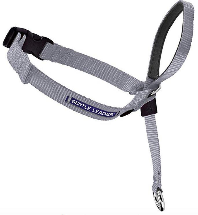 PetSafe gentle leader collar