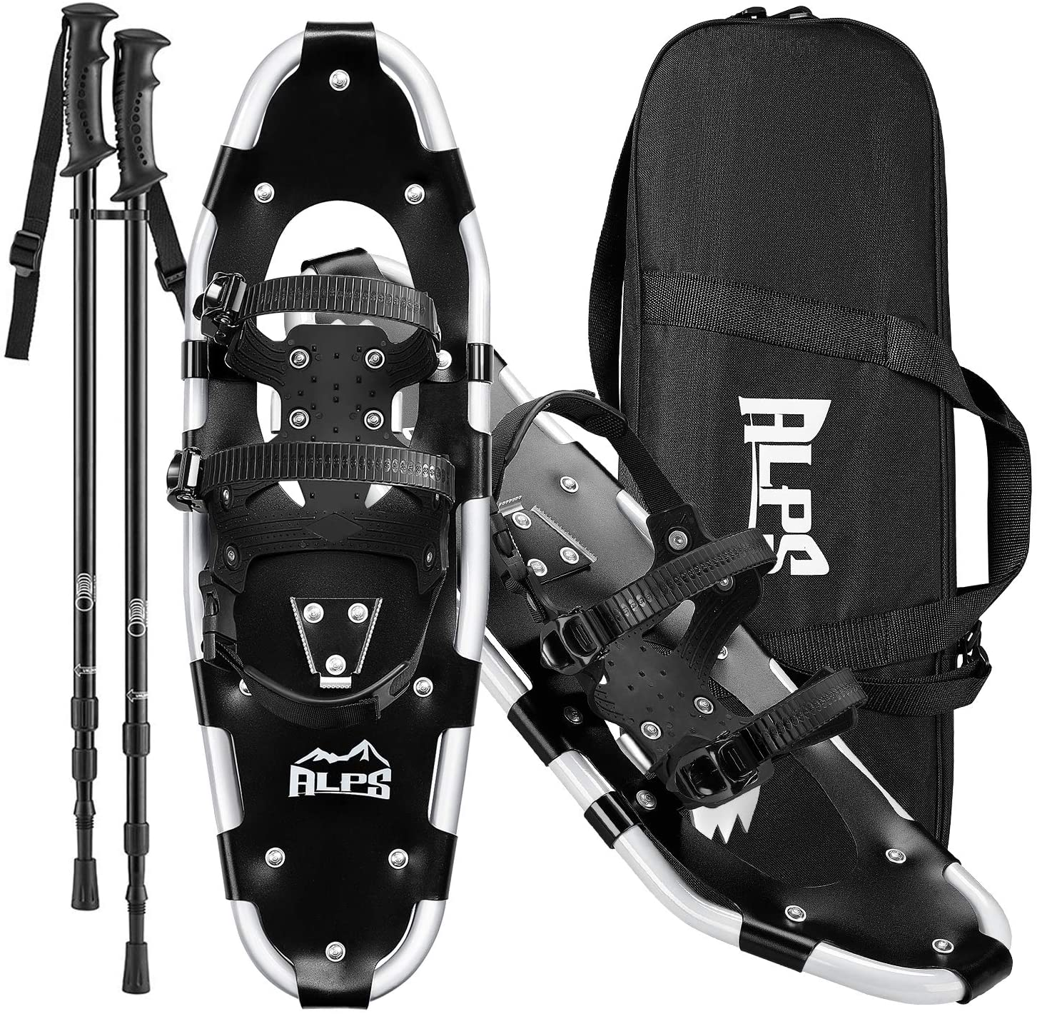 Alps Snowshoes Render Cropped