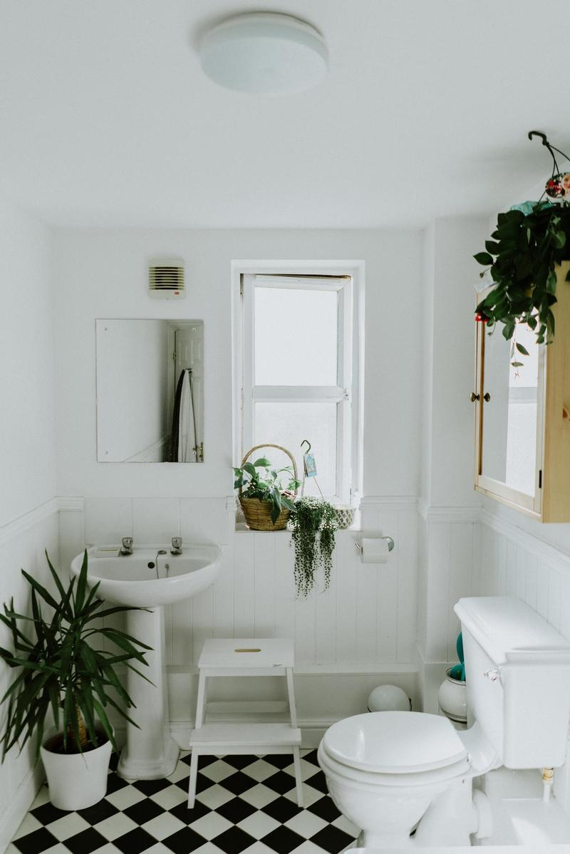 A white and black decorated bathroom with several plants hanging.