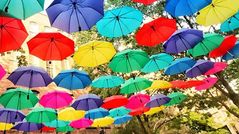 photo of An umbrella is useful for sun shade as well as rain image