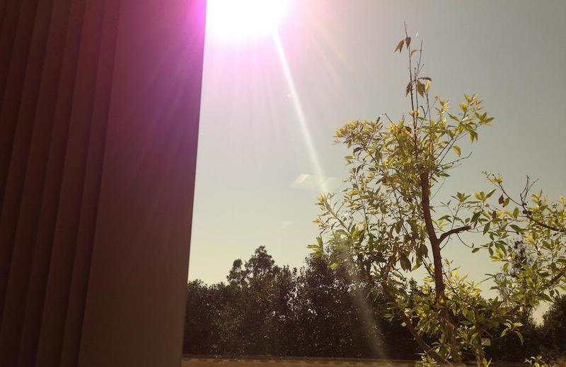 iphone-5-purple-lens-flare