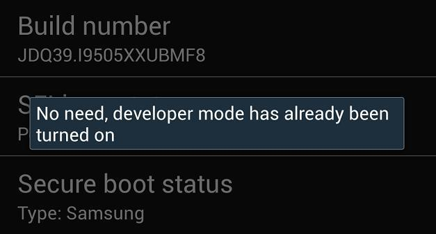 Developer Mode