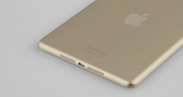 gold iPad mini 2 rear shell leak
