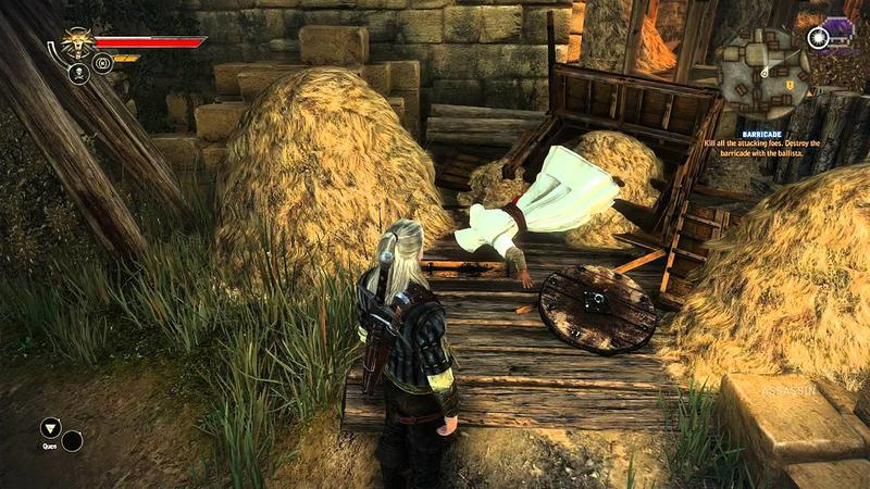 Dead Assassin in Witcher 2