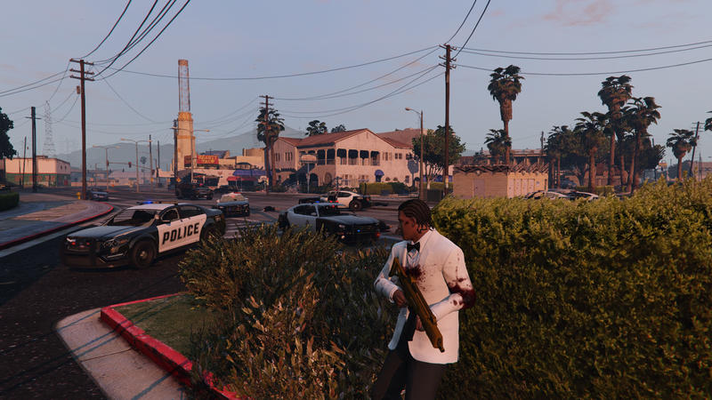 This GTAV mod makes wanted levels and police actions more