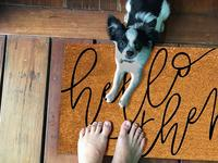 The best outdoor doormat is your first line of defense against any dirt