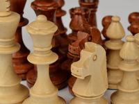 Bring in reinforcements: Chess pieces for replacement and tournament play