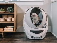 Find the perfect litter box for your furry friend