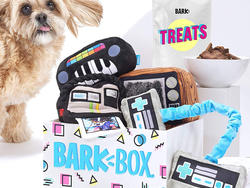 Don't skip the pup this Prime Day! Save $11 on a supersized BarkBox