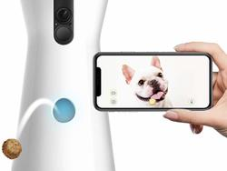 Your pet will love this Furbo treat-tossing dog camera and you'll love the Prime Day discount