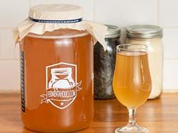 Make your own kombucha with these starter kits
