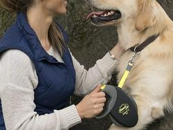 Let your dog thing it's free to roam with the best retractable dog leashes