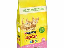 Keep your kitty happy and purring with these cat foods.