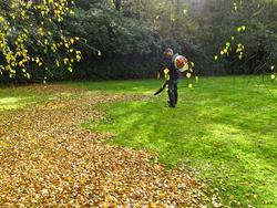A large garden can be a curse if not for the backpack leaf blowers