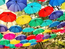 An umbrella is useful for sun shade as well as rain