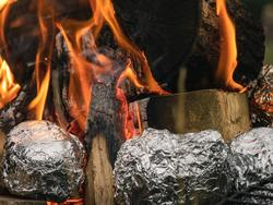 Ensure every dish is covered with a little aluminum foil