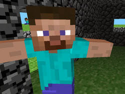 Minecraft Steve has No Gender; The Same Goes for the Game