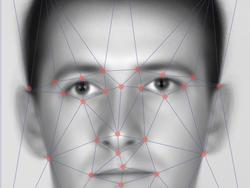 "Senate Debates Creating National ""Biometric"" Database On All Adults In the U.S."