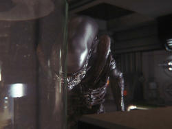 Alien: Isolation Screenshots - The Face of Evil and Not a Gun in Sight