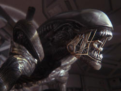 Alien: Isolation Release Date Announced for October 7th
