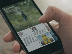 "Facebook Partners With TED Talks for New ""Paper"" Content"