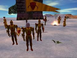 15 Year Old MMO Asheron's Call Ceases Development