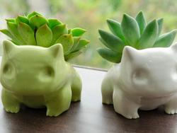 """Grow Your Own """"not-Bulbasaur"""" For Just $50"""