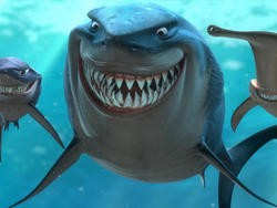 Sharks Keep Trying to Eat Google's Submarine Fiber Optic Cables