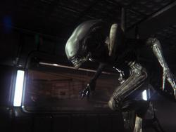 Alien: Isolation Reaches a New Level of Scary with an Oculus Rift Fan-Hack