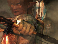 Final Fantasy XI entering its last month before shut down on consoles