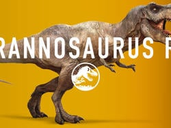 Get a load of the dinosaurs in 'Jurassic World'
