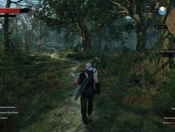 The Witcher 3: Wild Hunt will have a day one patch, code for GOG backup