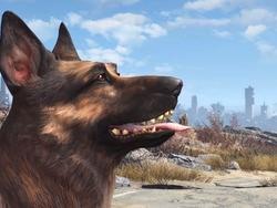 Fallout 4's Dogmeat is immortal, can't be killed in battle