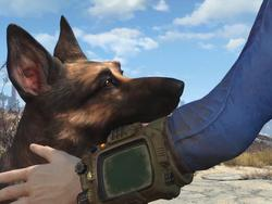 The 5 most exciting things revealed by the Fallout 4 trailer