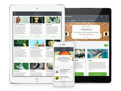 Mind hack: Blinklist Premium subscription - Absorb entire books in 15 minutes or less