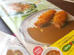CoCo Ichibanya Curry House, home of Japan's best nerd fuel
