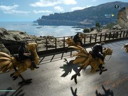 Final Fantasy XV's Chocobo racing is quite the throwback
