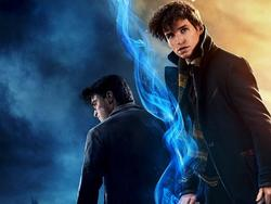 Iconic Harry Potter Character is Returning for Fantastic Beasts 2