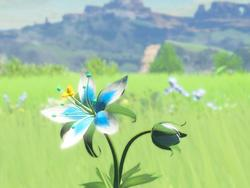 Zelda: Breath of the Wild took inspiration from Minecraft and Terraria, says director