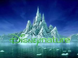 Discover the beauty of the wild with these discounted DisneyNature digital HD documentaries