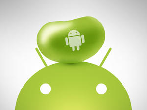 Google Hints at Fall Release for Android 5.0, Jelly Bean