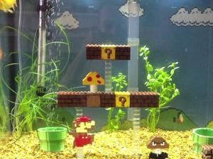 How About a Super Mario Bros. Themed Fish Tank?