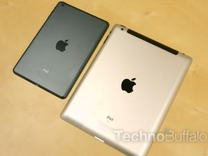 Can Apple's iPad Survive?