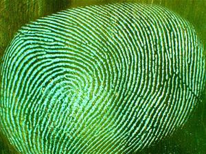 Fingerprint theft possible through modern photography, researchers say