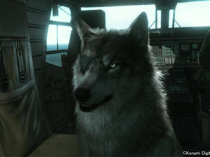 Of Course Big Boss' Wolf Companion Wears an Eye-Patch in Metal Gear Solid V