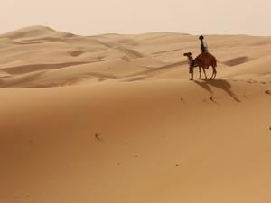 Google Used a Camel to Create Stunning Liwa Desert Street View