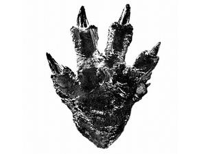 New Godzilla movie is coming out of Japan next year