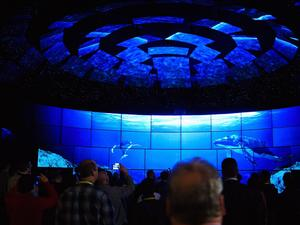 CES 2016 in 360-degree video - The best way to explore CES without actually being there