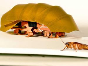 This robotic cockroach may save your life one day